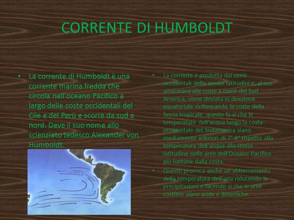 CORRENTE DI HUMBOLDT La corrente di Humboldt è una corrente marina fredda che circola nell'oceano Pacifico a largo delle coste occidentali del Cile e