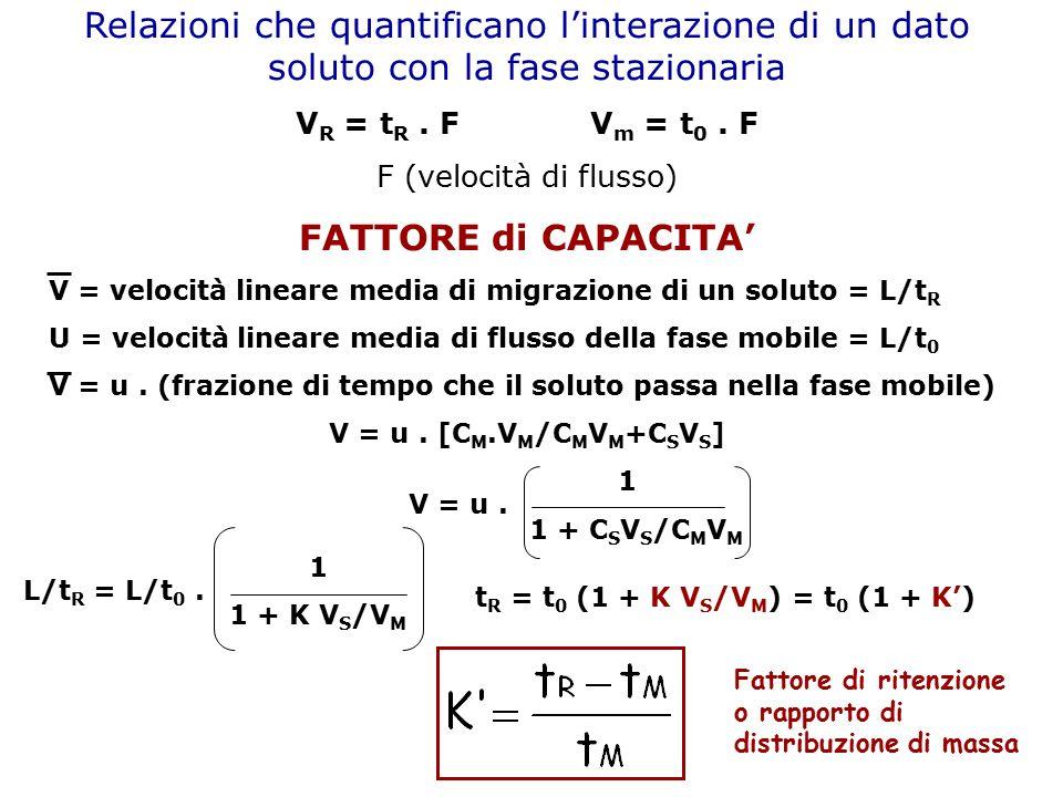 Relazioni che quantificano l'interazione di un dato soluto con la fase stazionaria V R = t R. F V m = t 0. F F (velocità di flusso) FATTORE di CAPACIT
