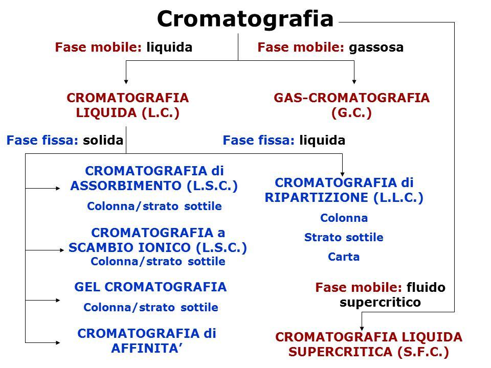 Cromatografia Fase mobile: liquidaFase mobile: gassosa CROMATOGRAFIA LIQUIDA (L.C.) GAS-CROMATOGRAFIA (G.C.) Fase fissa: liquida CROMATOGRAFIA di RIPA