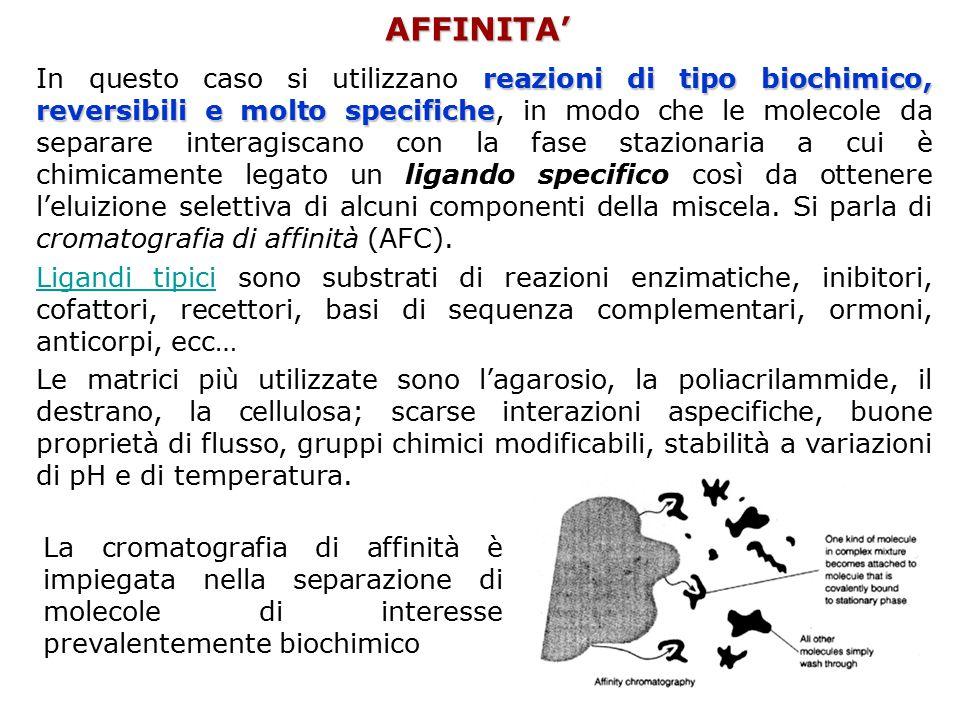 AFFINITA' reazioni di tipo biochimico, reversibili e molto specifiche In questo caso si utilizzano reazioni di tipo biochimico, reversibili e molto sp