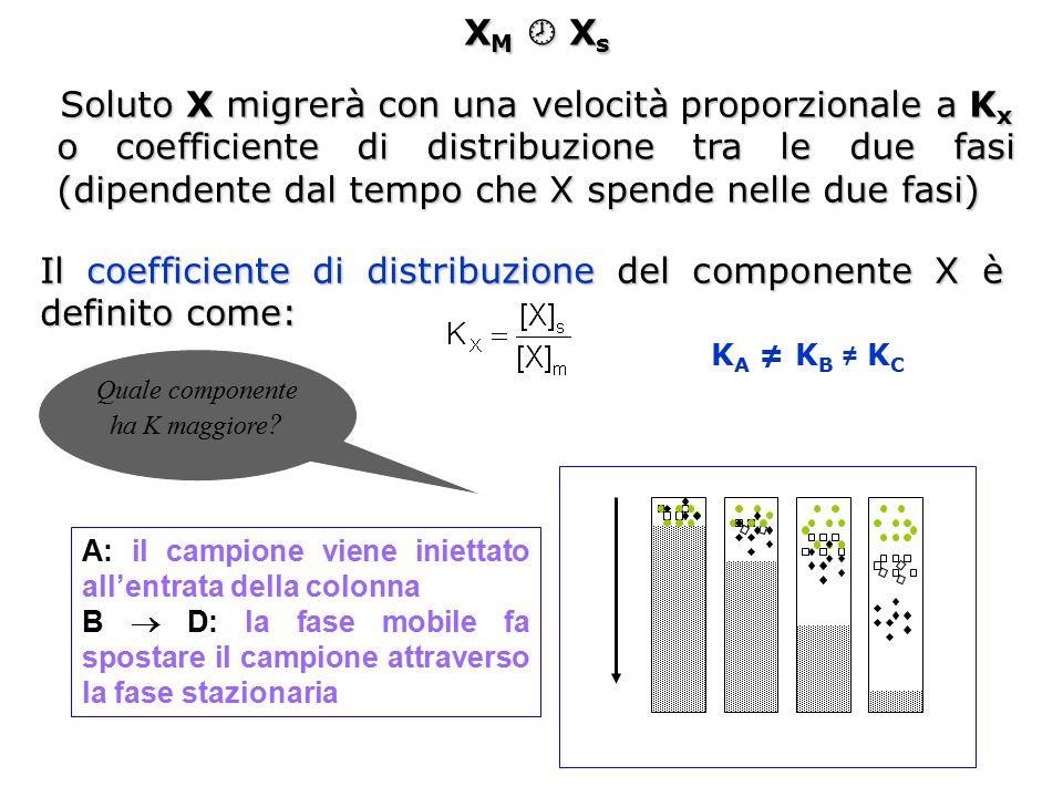 X M  X s Soluto X migrerà con una velocità proporzionale a K x o coefficiente di distribuzione tra le due fasi (dipendente dal tempo che X spende nel