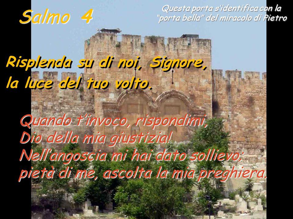 """Il salmo 4 fa parte del primo gruppo del salterio davidico, dove """"MOLTI"""" attaccano il salmista (3-9). In questo salmo però, si vede anche la potenza d"""