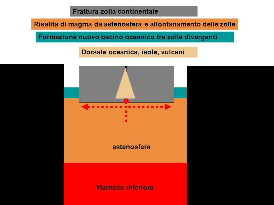 Frattura zolla continentale Risalita di magma da astenosfera e allontanamento delle zolle Formazione nuovo bacino oceanico tra zolle divergenti asteno