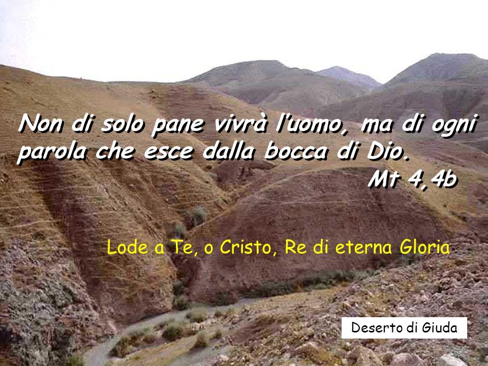 Deserto di Giuda Non di solo pane vivrà l'uomo, ma di ogni parola che esce dalla bocca di Dio.