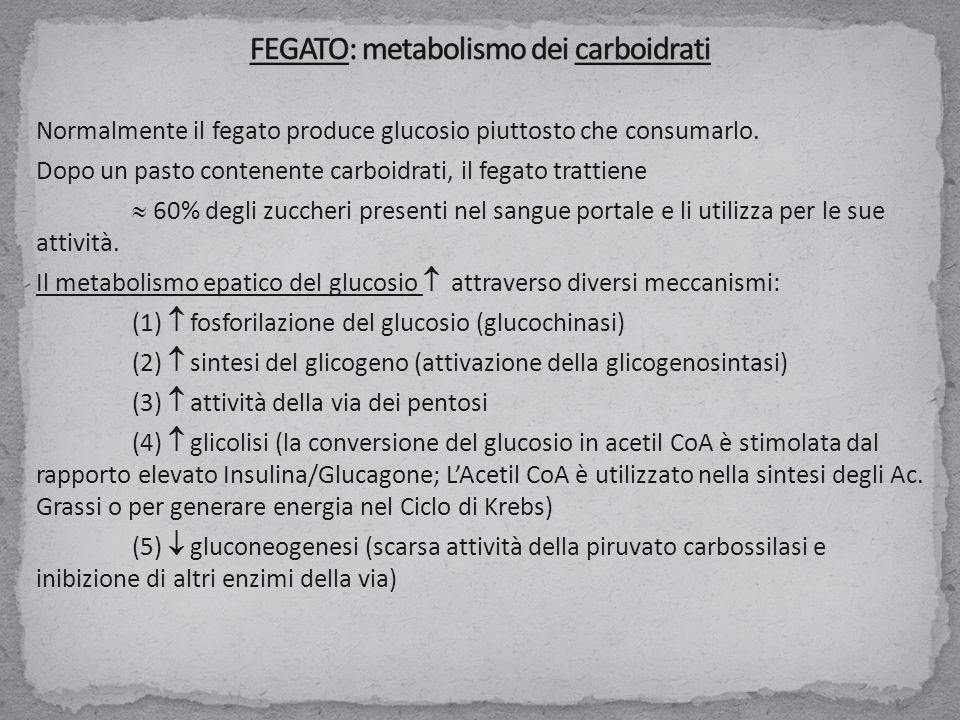 Normalmente il fegato produce glucosio piuttosto che consumarlo. Dopo un pasto contenente carboidrati, il fegato trattiene  60% degli zuccheri presen