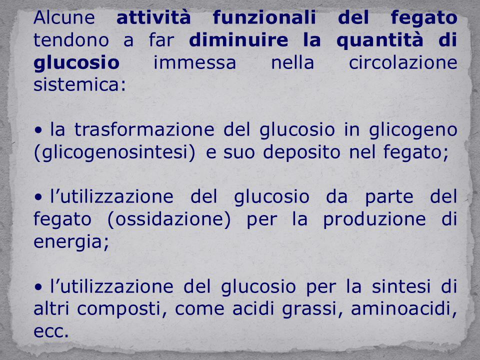 Alcune attività funzionali del fegato tendono a far diminuire la quantità di glucosio immessa nella circolazione sistemica: la trasformazione del gluc