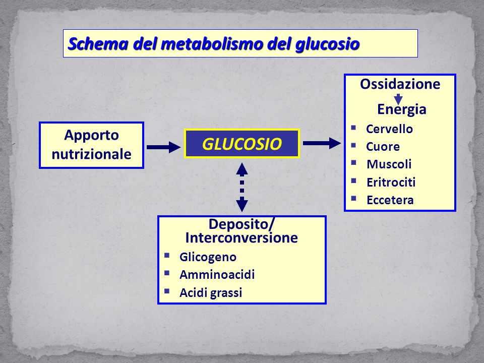 Apporto nutrizionale GLUCOSIO Ossidazione Energia  Cervello  Cuore  Muscoli  Eritrociti  Eccetera Deposito/ Interconversione  Glicogeno  Ammino