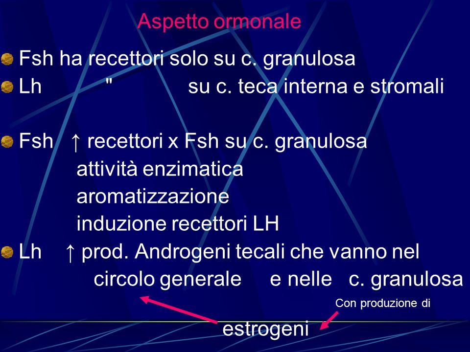 Fsh ha recettori solo su c. granulosa Lh