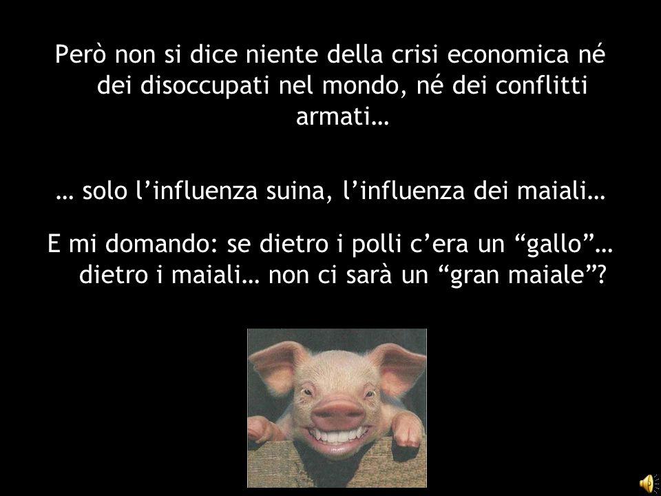 Però non si dice niente della crisi economica né dei disoccupati nel mondo, né dei conflitti armati… … solo l'influenza suina, l'influenza dei maiali… E mi domando: se dietro i polli c'era un gallo … dietro i maiali… non ci sarà un gran maiale