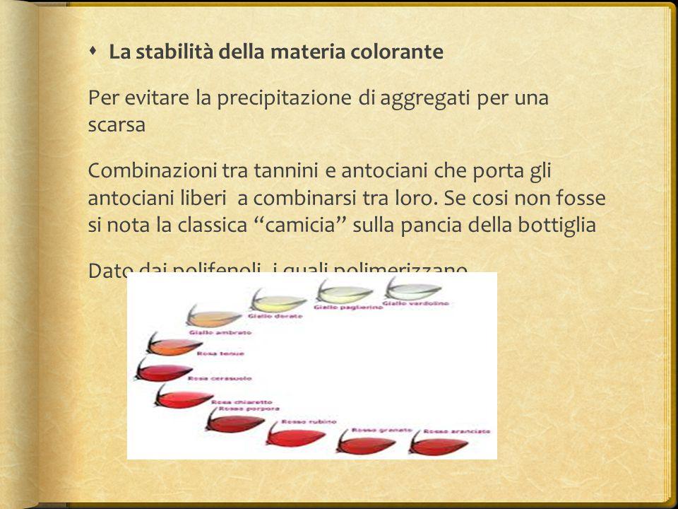  La stabilità della materia colorante Per evitare la precipitazione di aggregati per una scarsa Combinazioni tra tannini e antociani che porta gli an