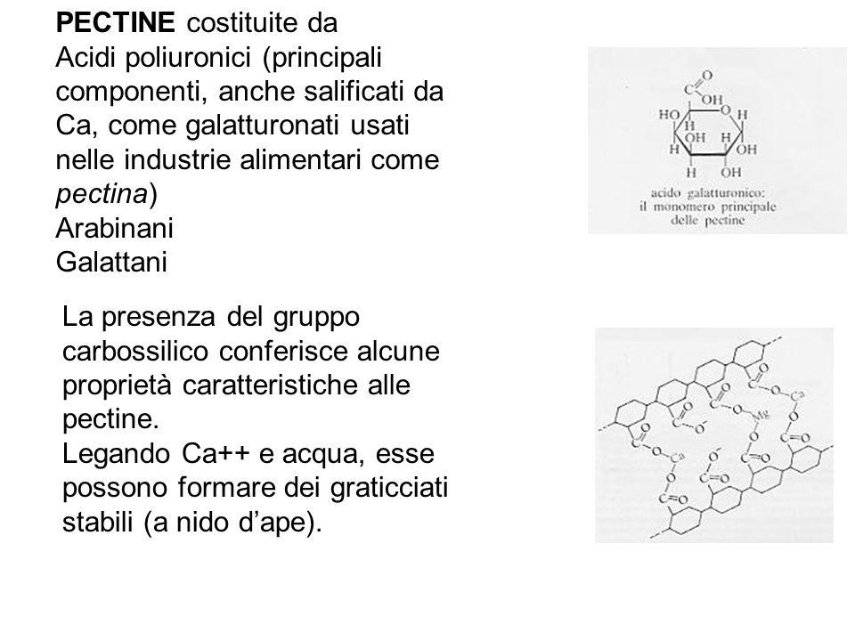La presenza del gruppo carbossilico conferisce alcune proprietà caratteristiche alle pectine. Legando Ca++ e acqua, esse possono formare dei graticcia