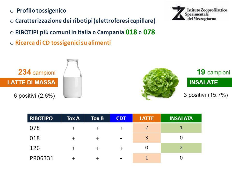 o Profilo tossigenico o Caratterizzazione dei ribotipi (elettroforesi capillare) o RIBOTIPI più comuni in Italia e Campania 018 e 078 o Ricerca di CD