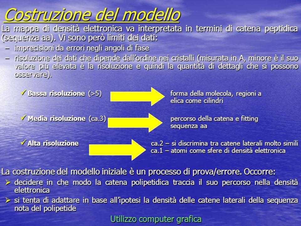Costruzione del modello La mappa di densità elettronica va interpretata in termini di catena peptidica (sequenza aa). Vi sono però limiti dei dati: –i