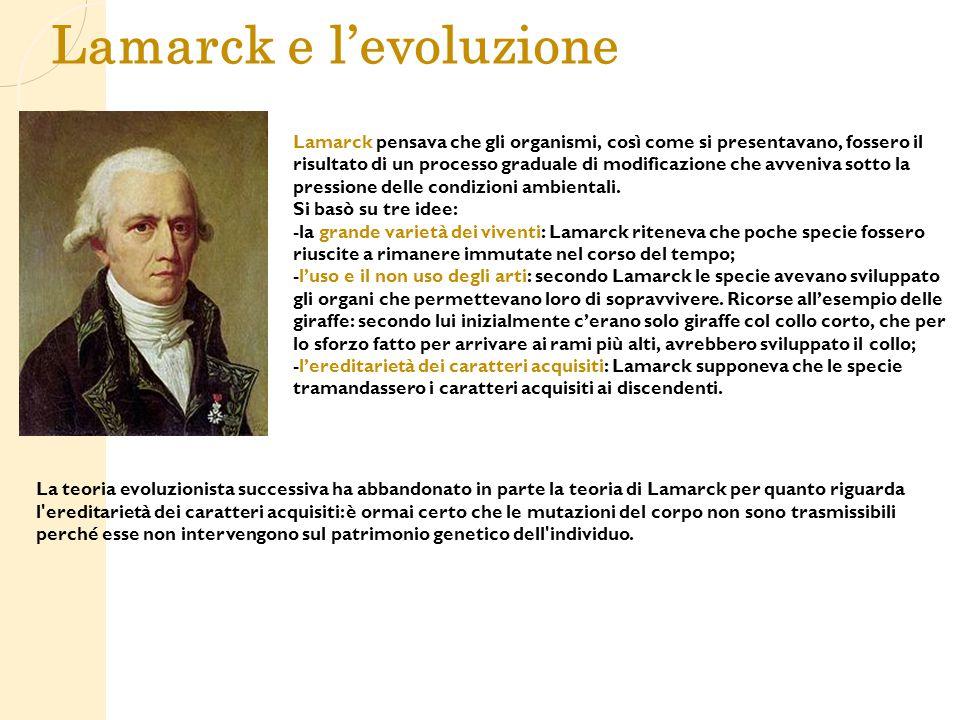 Lamarck e l'evoluzione Lamarck pensava che gli organismi, così come si presentavano, fossero il risultato di un processo graduale di modificazione che