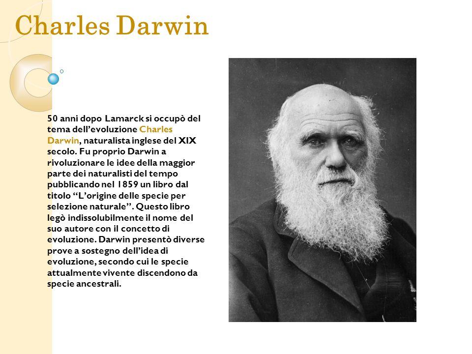 Charles Darwin 50 anni dopo Lamarck si occupò del tema dell'evoluzione Charles Darwin, naturalista inglese del XIX secolo. Fu proprio Darwin a rivoluz