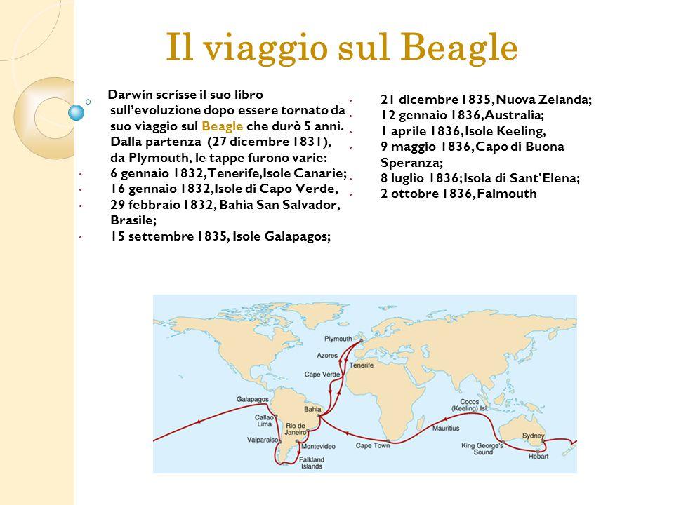 Darwin scrisse il suo libro sull'evoluzione dopo essere tornato da suo viaggio sul Beagle che durò 5 anni. Dalla partenza (27 dicembre 1831), da Plymo
