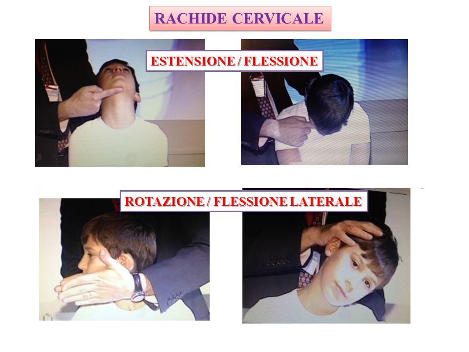 RACHIDE CERVICALE ROTAZIONE / FLESSIONE LATERALE ESTENSIONE / FLESSIONE