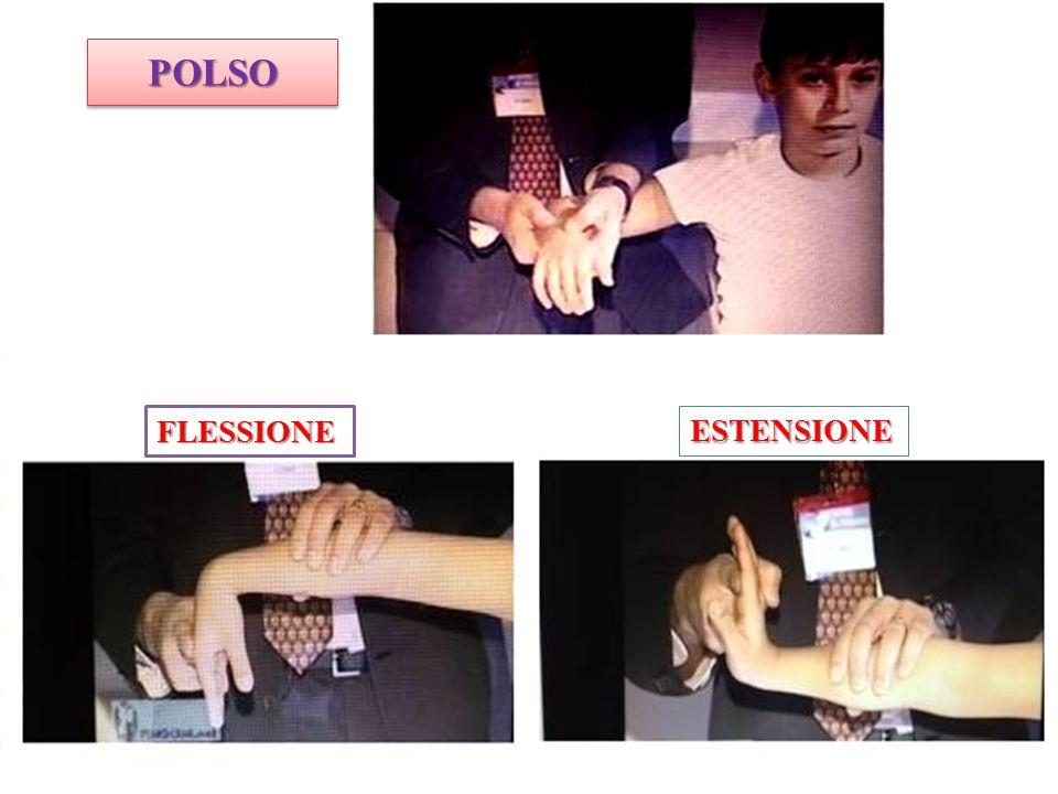 POLSOPOLSO ESTENSIONE FLESSIONE