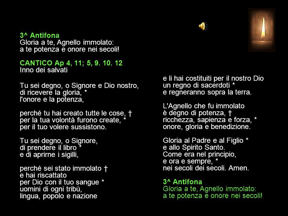 3^ Antifona Gloria a te, Agnello immolato: a te potenza e onore nei secoli.