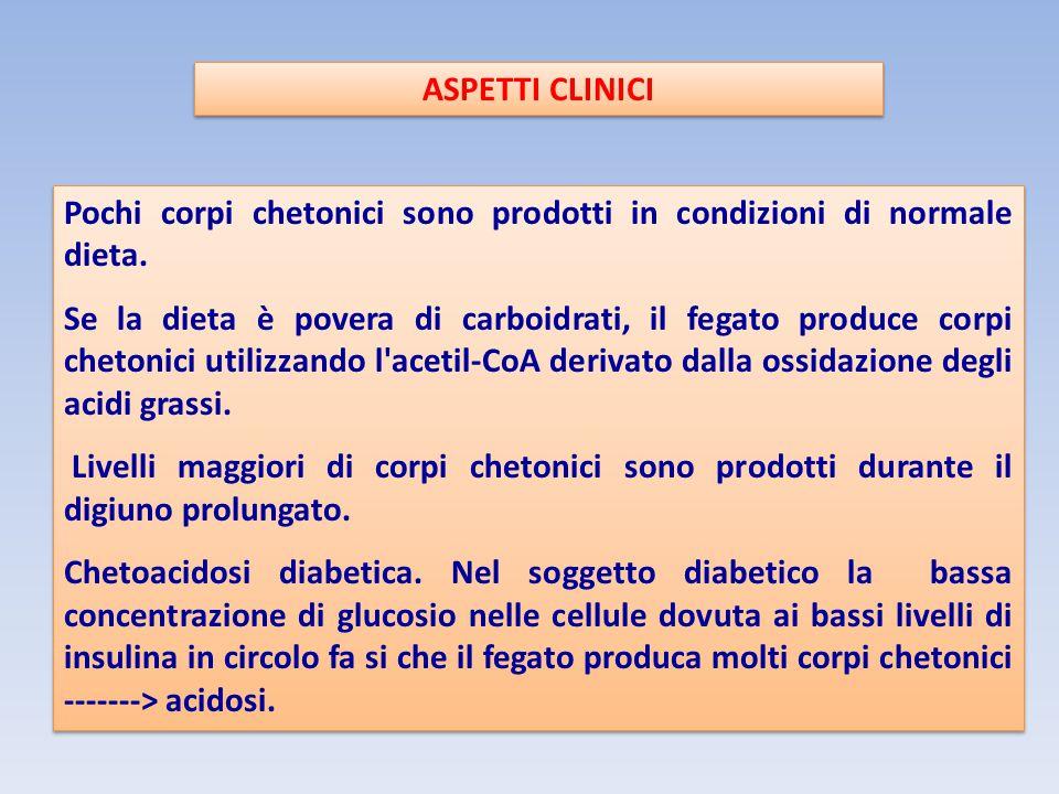 ASPETTI CLINICI Pochi corpi chetonici sono prodotti in condizioni di normale dieta. Se la dieta è povera di carboidrati, il fegato produce corpi cheto