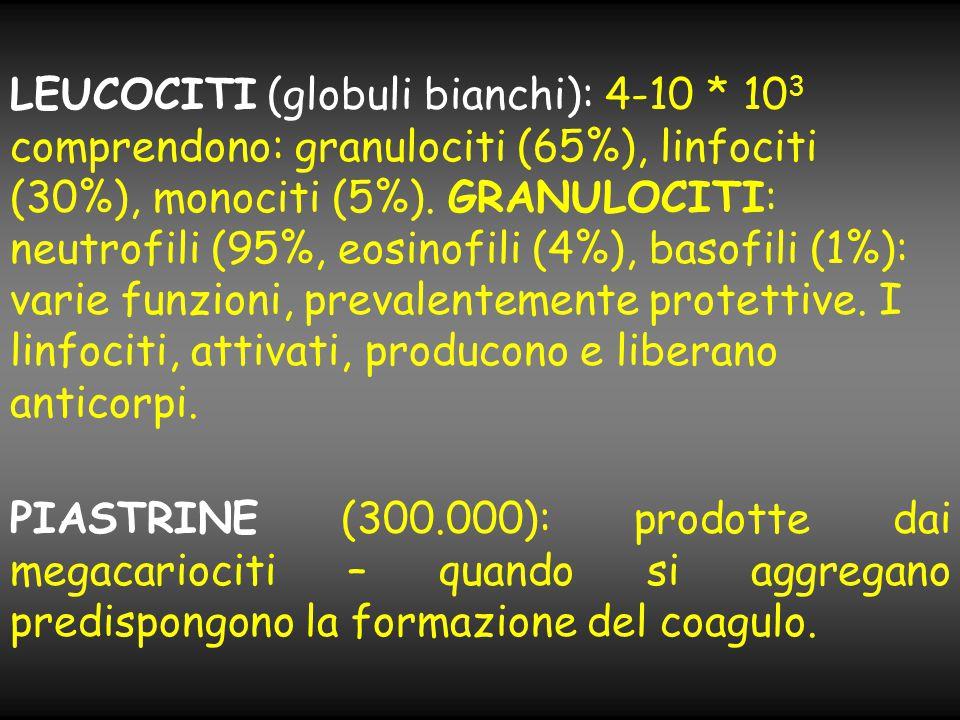 LEUCOCITI (globuli bianchi): 4-10 * 10 3 comprendono: granulociti (65%), linfociti (30%), monociti (5%). GRANULOCITI: neutrofili (95%, eosinofili (4%)