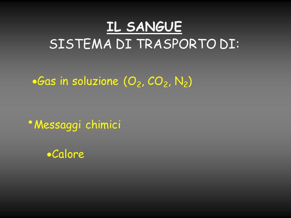 IL SANGUE SISTEMA DI TRASPORTO DI:  Gas in soluzione (O 2, CO 2, N 2 )  Calore Messaggi chimici