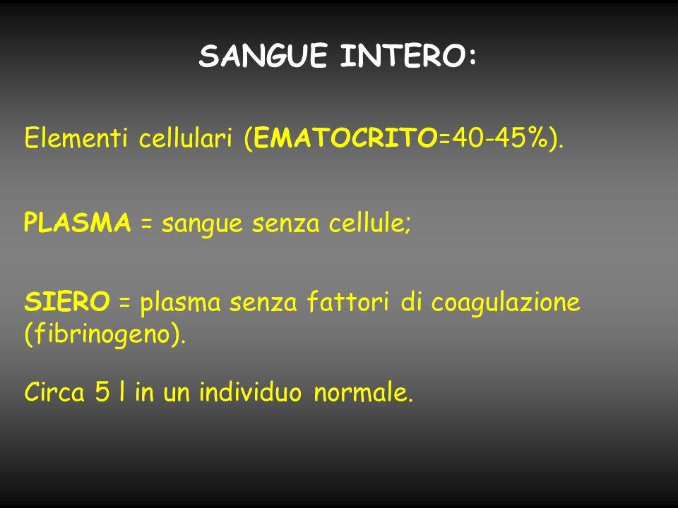 SANGUE INTERO: Elementi cellulari (EMATOCRITO=40-45%). PLASMA = sangue senza cellule; SIERO = plasma senza fattori di coagulazione (fibrinogeno). Circ