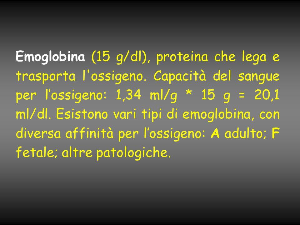 Emoglobina (15 g/dl), proteina che lega e trasporta l'ossigeno. Capacità del sangue per l'ossigeno: 1,34 ml/g * 15 g = 20,1 ml/dl. Esistono vari tipi