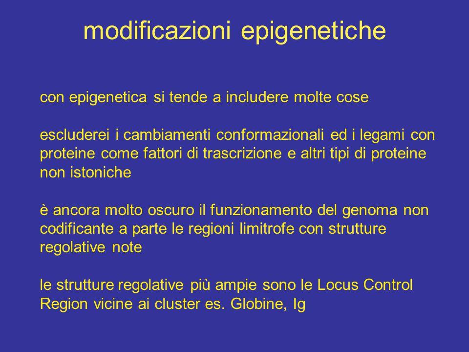 modificazioni epigenetiche con epigenetica si tende a includere molte cose escluderei i cambiamenti conformazionali ed i legami con proteine come fatt