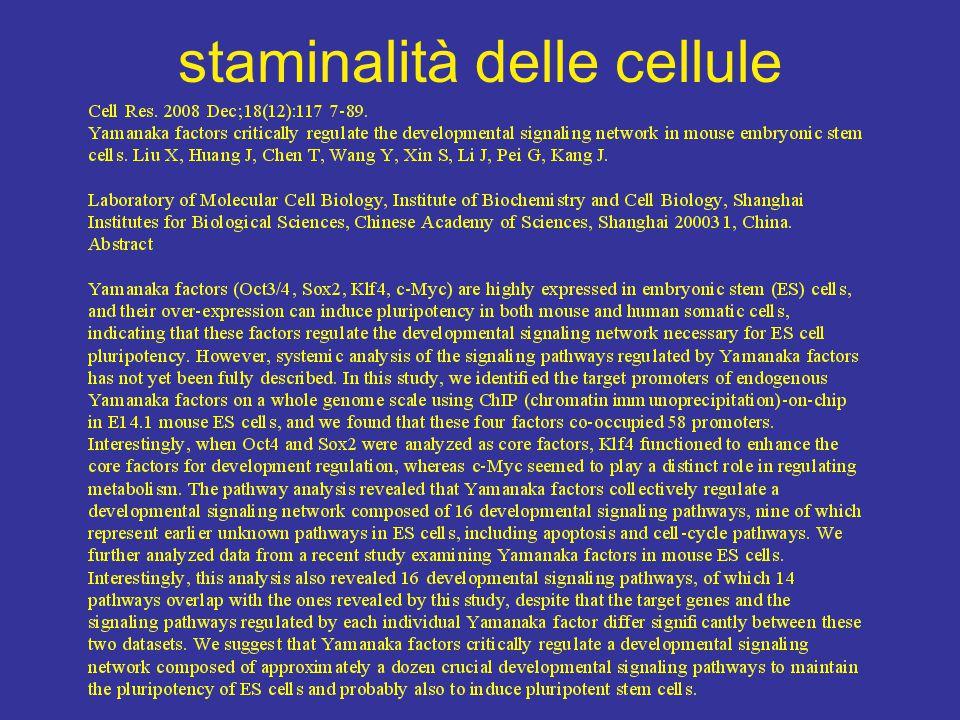 staminalità delle cellule