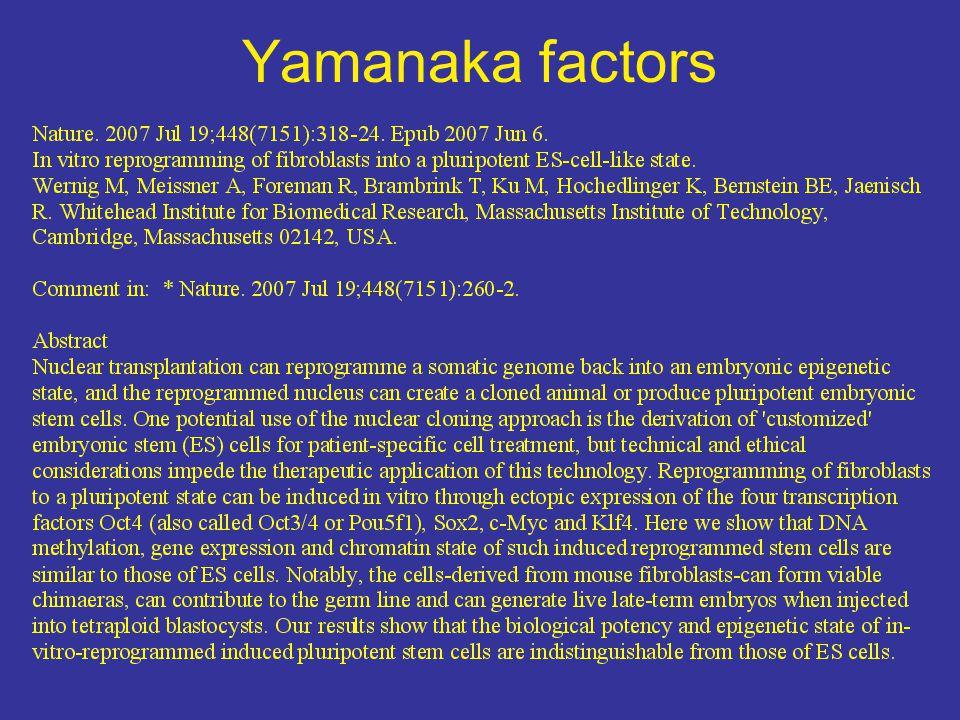 Yamanaka factors