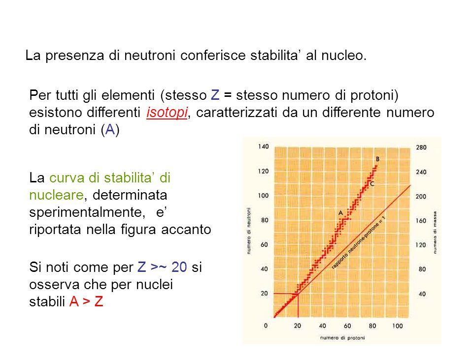 La presenza di neutroni conferisce stabilita' al nucleo. Per tutti gli elementi (stesso Z = stesso numero di protoni) esistono differenti isotopi, car