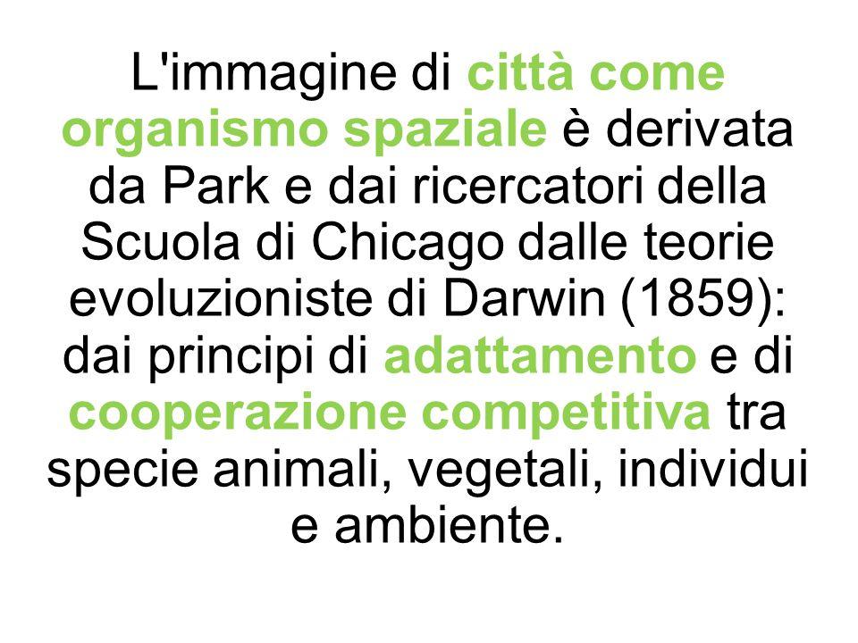 L'immagine di città come organismo spaziale è derivata da Park e dai ricercatori della Scuola di Chicago dalle teorie evoluzioniste di Darwin (1859):