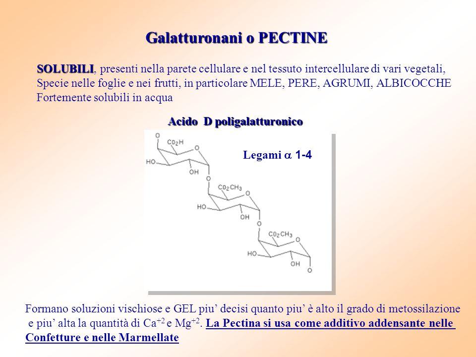 Galatturonani o PECTINE SOLUBILI SOLUBILI, presenti nella parete cellulare e nel tessuto intercellulare di vari vegetali, Specie nelle foglie e nei fr
