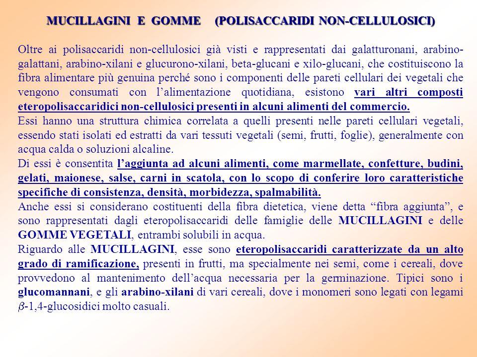 MUCILLAGINI E GOMME (POLISACCARIDI NON-CELLULOSICI) Oltre ai polisaccaridi non-cellulosici già visti e rappresentati dai galatturonani, arabino- galat
