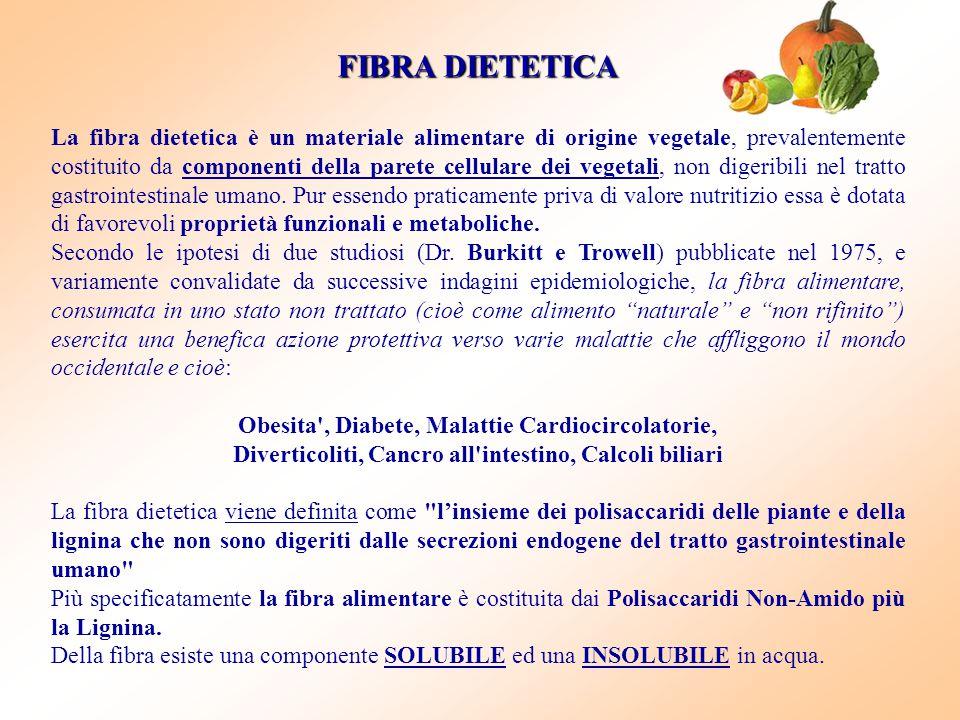 FIBRA DIETETICA La fibra dietetica è un materiale alimentare di origine vegetale, prevalentemente costituito da componenti della parete cellulare dei