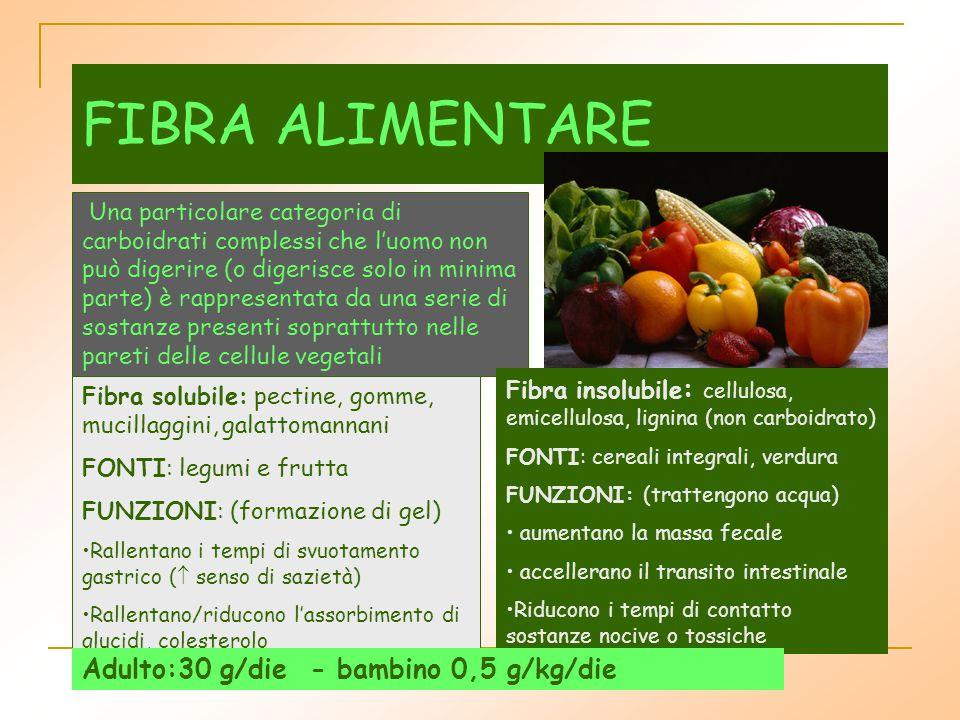 FIBRA ALIMENTARE Una particolare categoria di carboidrati complessi che l'uomo non può digerire (o digerisce solo in minima parte) è rappresentata da