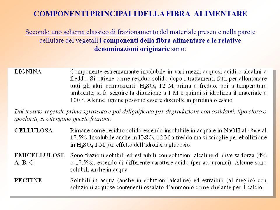 COMPONENTI PRINCIPALI DELLA FIBRA ALIMENTARE Secondo uno schema classico di frazionamento del materiale presente nella parete cellulare dei vegetali i
