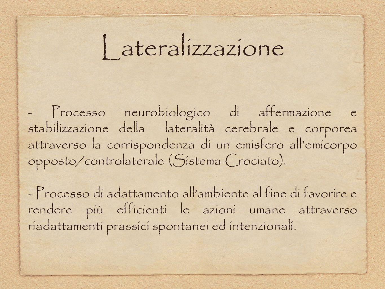 Lateralizzazione - Processo neurobiologico di affermazione e stabilizzazione della lateralità cerebrale e corporea attraverso la corrispondenza di un