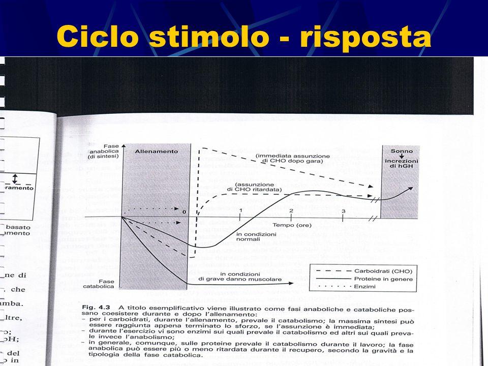 Ciclo stimolo - risposta a