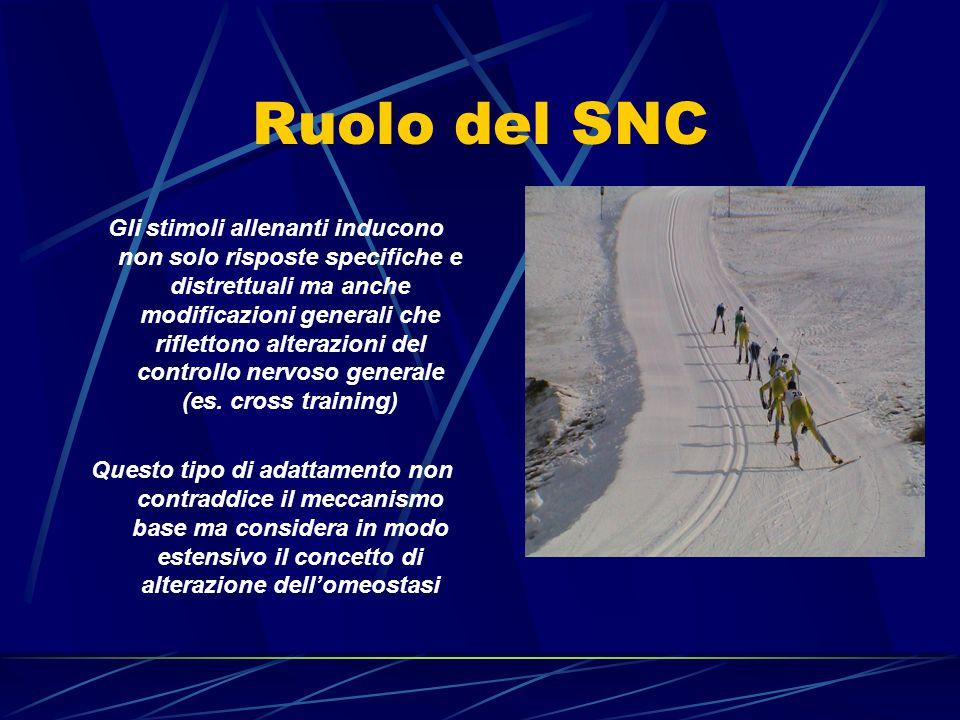 Ruolo del SNC Gli stimoli allenanti inducono non solo risposte specifiche e distrettuali ma anche modificazioni generali che riflettono alterazioni de