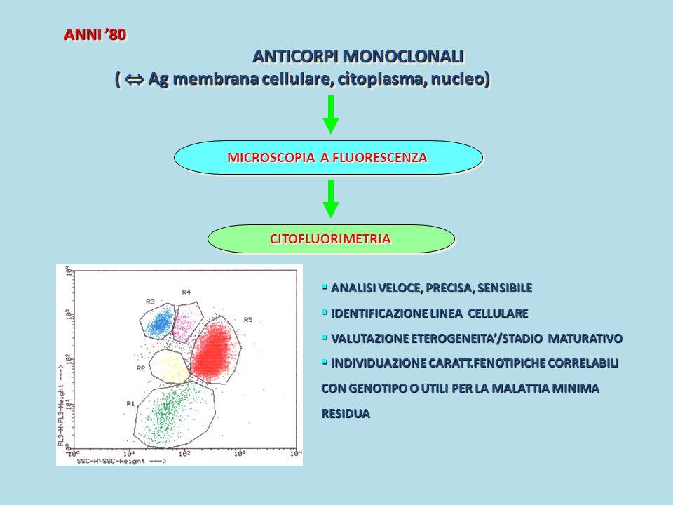 ANNI '80 ANTICORPI MONOCLONALI (  Ag membrana cellulare, citoplasma, nucleo) (  Ag membrana cellulare, citoplasma, nucleo) ANNI '80 ANTICORPI MONOCL