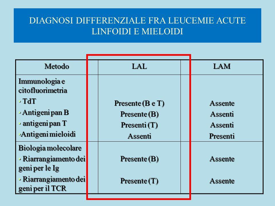 DIAGNOSI DIFFERENZIALE FRA LEUCEMIE ACUTE LINFOIDI E MIELOIDI MetodoLALLAM Immunologia e citofluorimetria TdT TdT Antigeni pan B Antigeni pan B antige