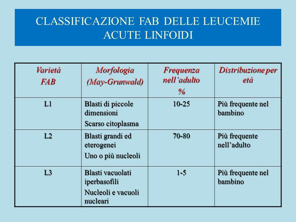 CLASSIFICAZIONE FAB DELLE LEUCEMIE ACUTE LINFOIDI VarietàFABMorfologia(May-Grunwald) Frequenza nell'adulto % Distribuzione per età L1 Blasti di piccol