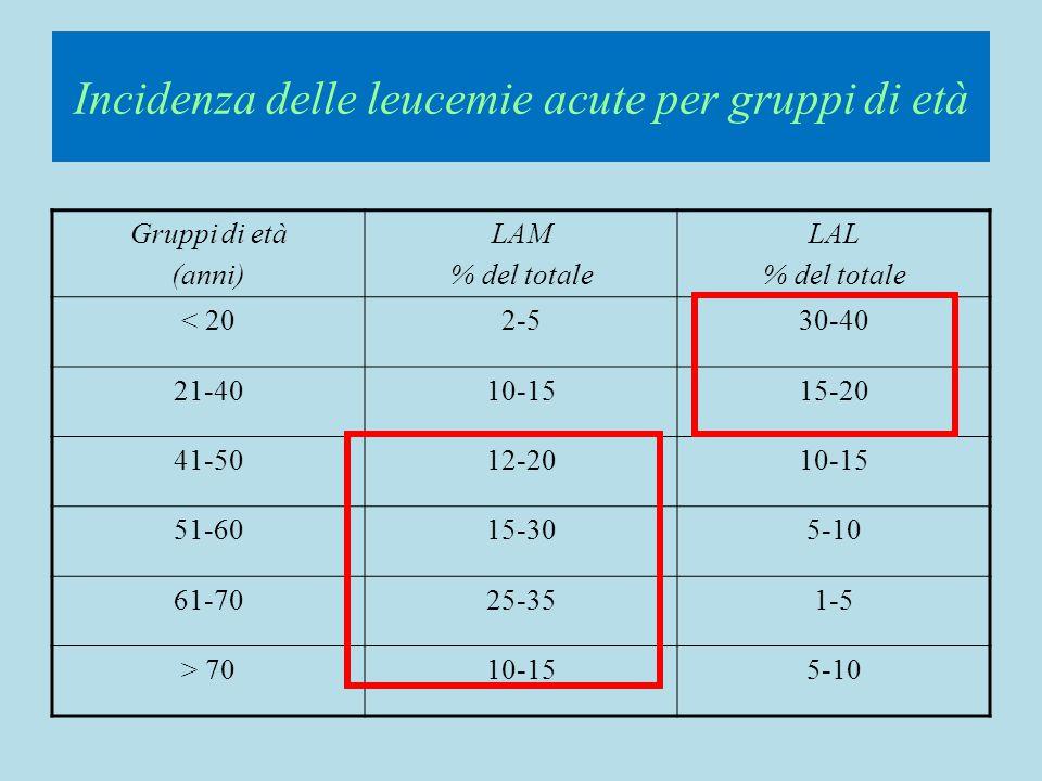 LEUCEMIA ACUTA PROMIELOCITICA (M3) t(15;17)(q22;q21) PLM-RAR  MORFOLOGIA: PROMIELOCITI >90% CLASSICA (ipergranulare)CLASSICA (ipergranulare) IPOGRANULARE (nucleo convoluto/bilobato o incisura a chicco di caffè)IPOGRANULARE (nucleo convoluto/bilobato o incisura a chicco di caffè) MORFOLOGIA: PROMIELOCITI >90% CLASSICA (ipergranulare)CLASSICA (ipergranulare) IPOGRANULARE (nucleo convoluto/bilobato o incisura a chicco di caffè)IPOGRANULARE (nucleo convoluto/bilobato o incisura a chicco di caffè) IMMUNOFENOTIPO:CD34-DR-CyMPO++CD13+CD33+CD9+CD56+-IMMUNOFENOTIPO:CD34-DR-CyMPO++CD13+CD33+CD9+CD56+- 3-GRAN 2-MONO 1-LYMPH 4-BLAST 5-ERY