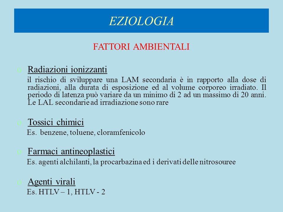 CLASSIFICAZIONE FAB DELLE LEUCEMIE ACUTE MIELOIDI, IMMUNOFENOTIPO E FREQUENZA Varietà Morfologia del midollo osseo Reazionicitochimiche Antigeni cellulari Frequenza % M6 Eritroblastica Eritroblasti > 50% Mieloblasti > 30% PAS positività (eritroblasti ) Mieloperossida si e Sudan B positivi (mieloblasti) Glicoforina-A3-5 M7Megacarioblastica Blasti di tipo linfoide > 30% Mielofibrosi Perossidasi piastrinica positiva (microscopia elettronica) CD41, CD42, CD61 1-3