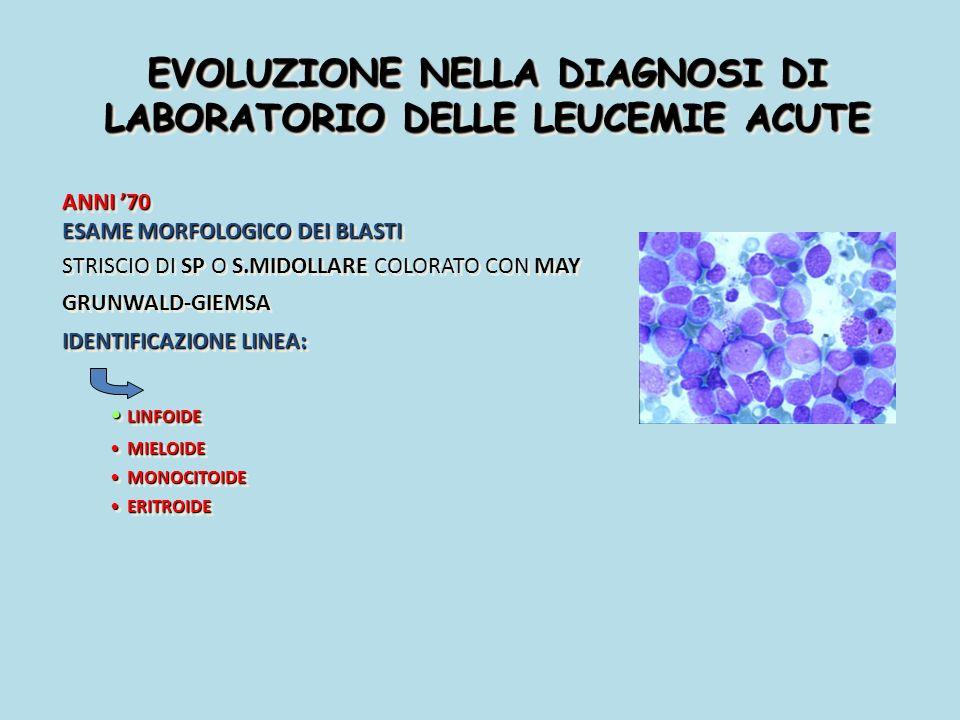 LEUCEMIA ACUTA MEGACARIOBLASTICA (M7) MORFOLOGIA: BLASTI CON ESTRUSIONI CITOPLASMATICHE GLOBOSE MORFOLOGIA: BLASTI CON ESTRUSIONI CITOPLASMATICHE GLOBOSE CITOCHIMICA : PEROSSIDASI: - PAS: +- (pochi granuli nelle estrusioni citoplasmatiche CITOCHIMICA : PEROSSIDASI: - PAS: +- (pochi granuli nelle estrusioni citoplasmatiche IMMUNOFENOTIPO: CD41+, CD42b +, CD61+, Ag MIELOIDI +- IMMUNOFENOTIPO: CD41+, CD42b +, CD61+, Ag MIELOIDI +-