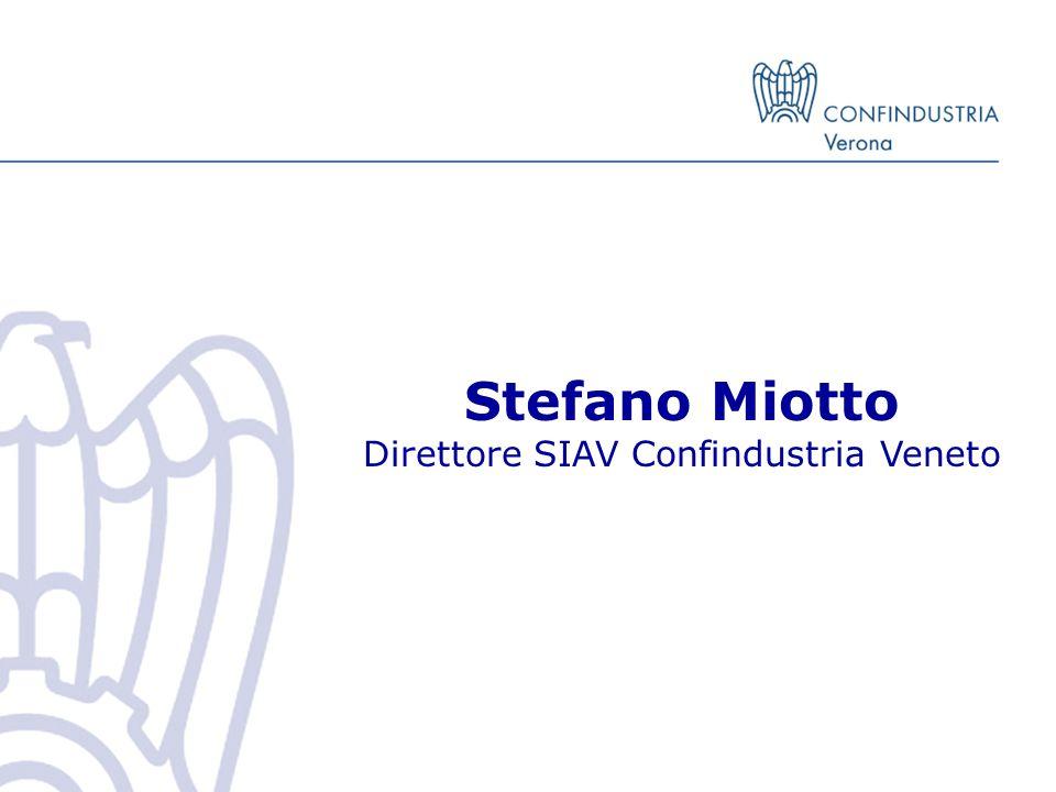 Stefano Miotto Direttore SIAV Confindustria Veneto