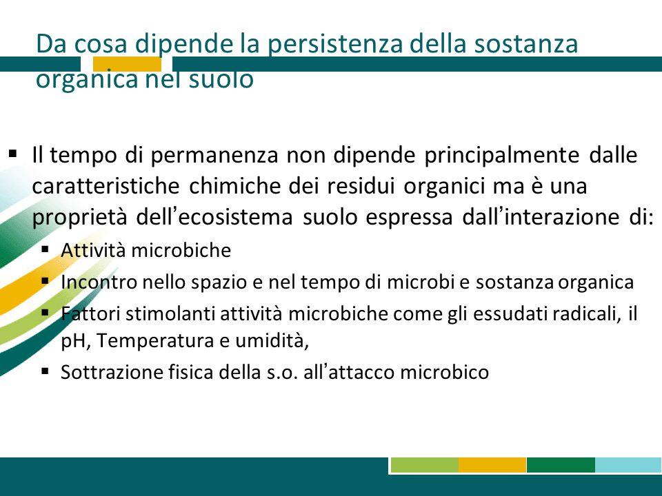 Da cosa dipende la persistenza della sostanza organica nel suolo  Il tempo di permanenza non dipende principalmente dalle caratteristiche chimiche de