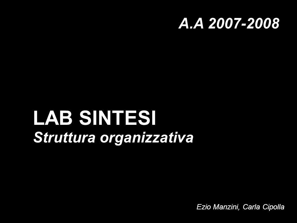 Struttura organizzativa LAB SINTESI A.A 2007-2008 Ezio Manzini, Carla Cipolla